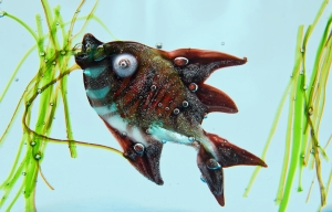Czy ryby są zdrowe